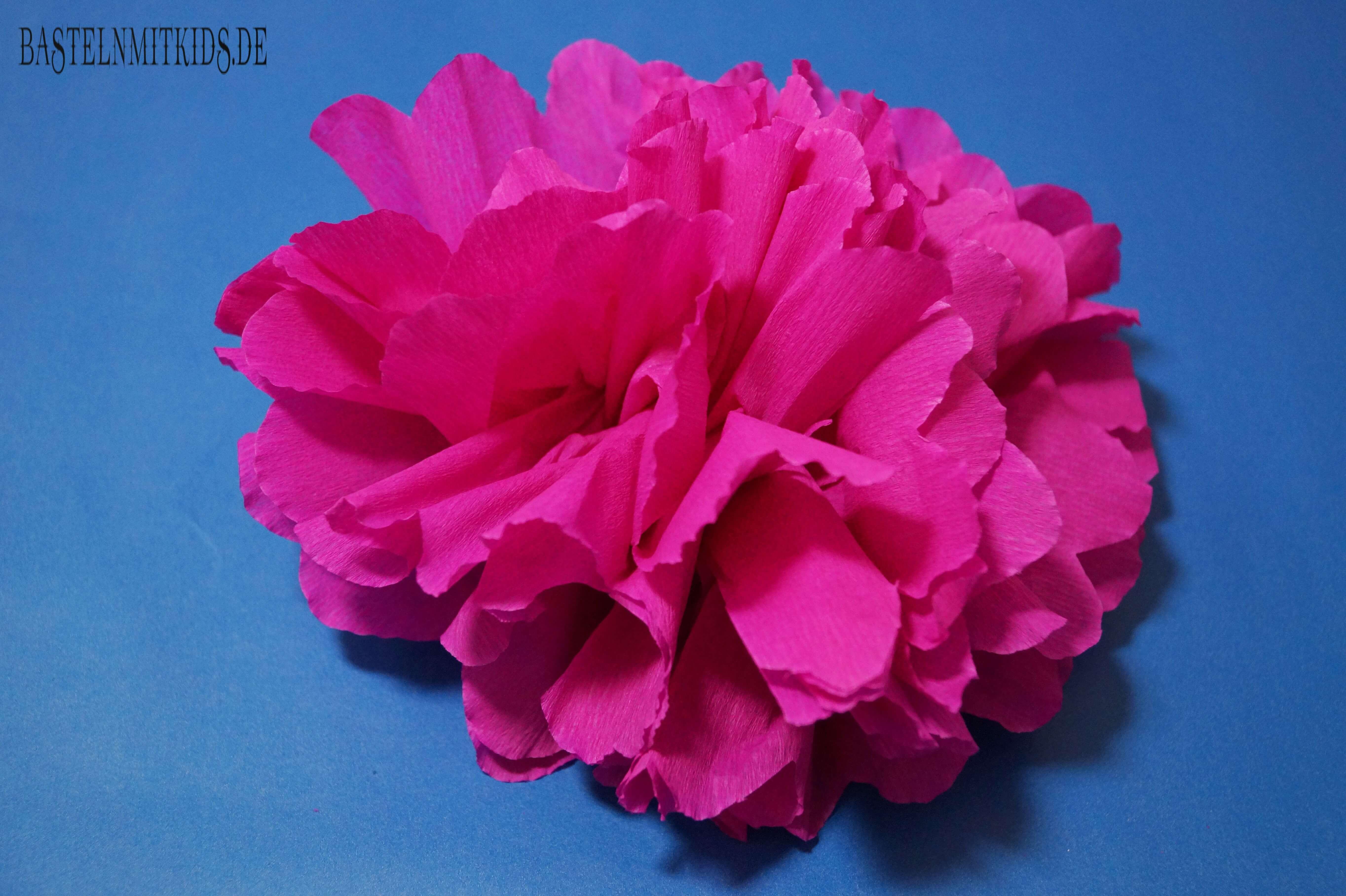 Frisch Papierblumen basteln - Bastelnmitkids YN12