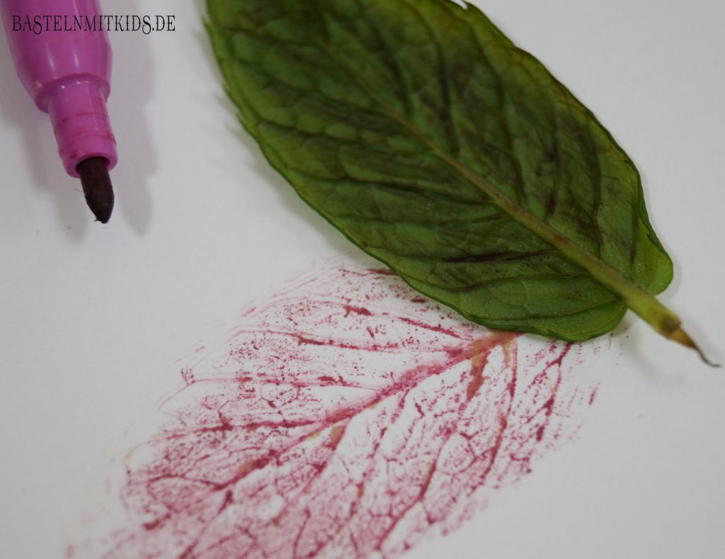 Blätter bilder abdruck