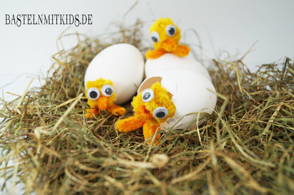 Osterküken familie