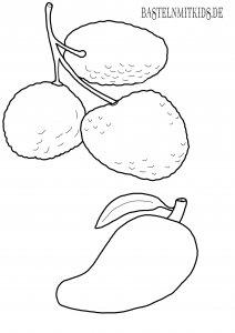 Litschi, Mango Malvorlage