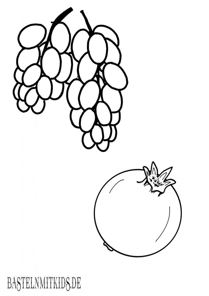 trauben und Granatapfel malvorlage